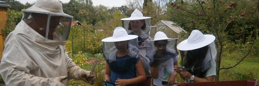 Der Imker erklärt den Kindern die Arbeit eines Imkers am Bienenstock